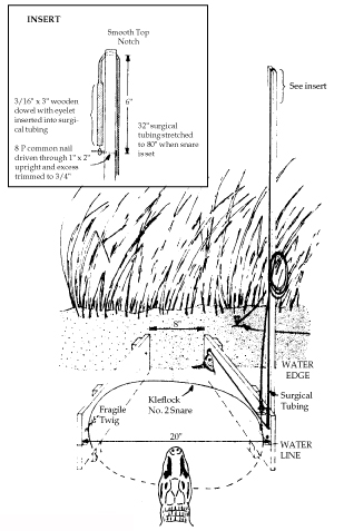 Figure 2. Alligator trip-snare trap.