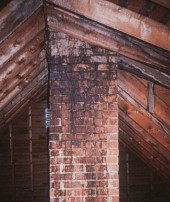 bat urine stained chimney