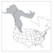 Figure 2. Distribution of grizzly/brown bears in North America.